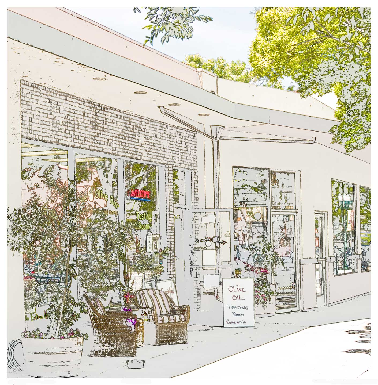 Olive-Store-sketch-mod-copy