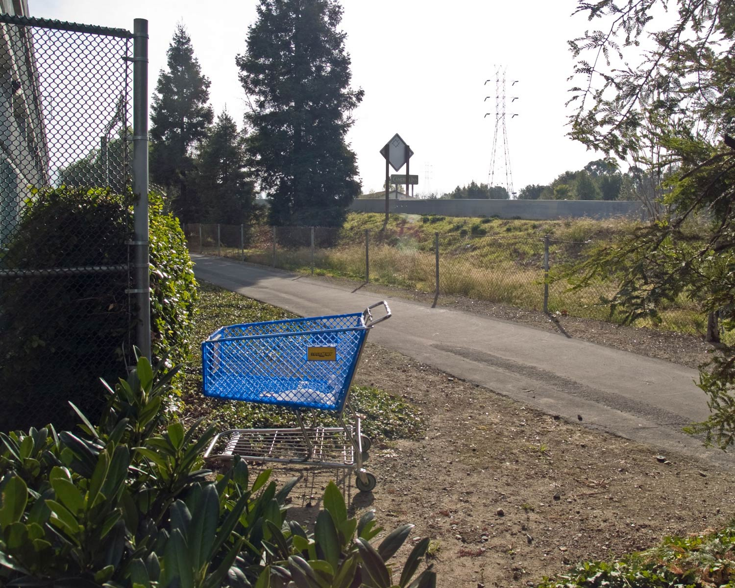 Shopping-cart-behind-fence_1293445