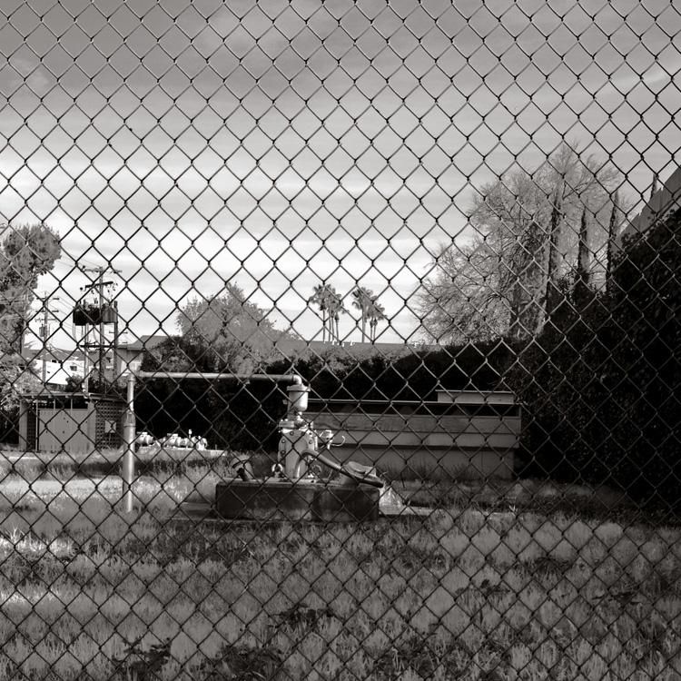Yard-Behind-Fence-B&W_1293443