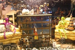 Halloween-Window-CIMG0928-copy