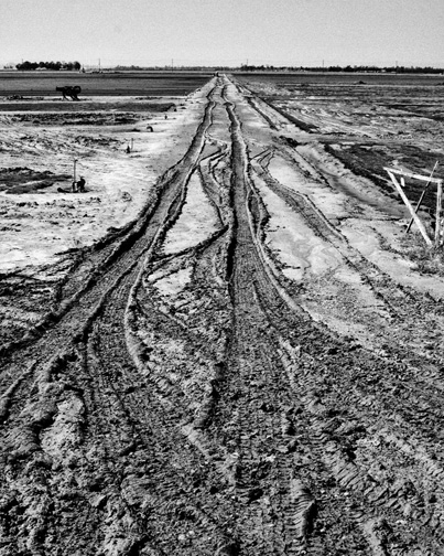B&W-Mud_1012481-web-small