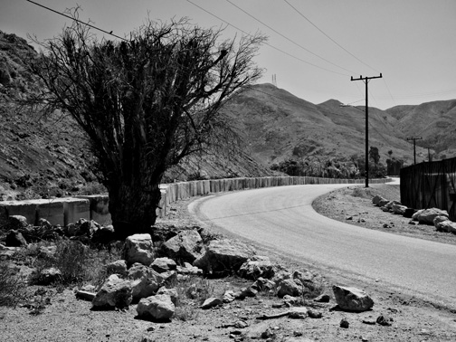 Road-B&W-N4040058-web-small