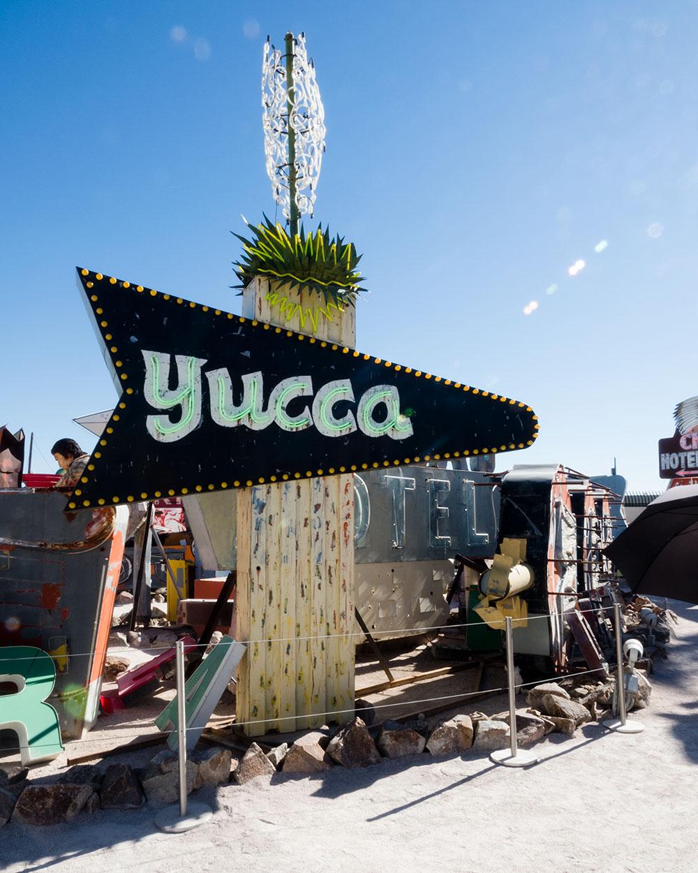 Yucca-PB070078-web