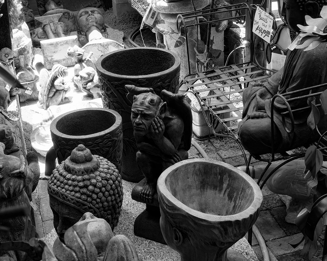 Bored-among-the-pots-BW-P6150214-web