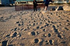 Sand-is-fun-P6140162-web