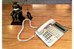 Frog-phone-IMG_5341-web